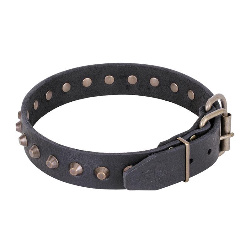 collier design original en cuir pour chien c74. Black Bedroom Furniture Sets. Home Design Ideas